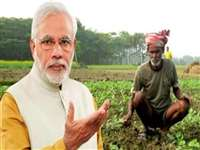 Budget 2021 Farmers: वित्त मंत्री बोली, MSP सिस्टम