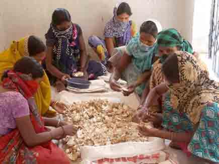 छत्तीसगढ़ में अंडों के बेकार छिलके से सोना बना रही हैं महिलाएं