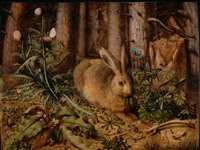 दानवीर बनना चाहते थे बंदर, सियार और ऊदबिलाव, लेकिन खरगोश को ऐसे मिल गया वरदान