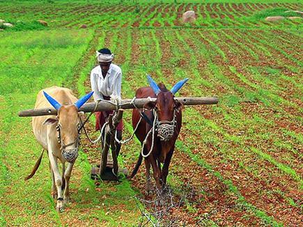 डीन की नौकरी छोड़ आदिवासियों संग कर रहा खेती