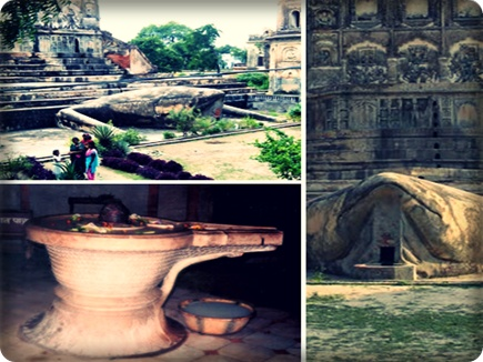 यहां है मेंढ़क मंदिर