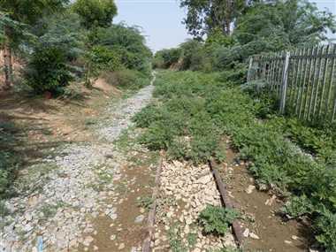 बड़ी लाइन के लिए जमीन अधिग्रहण हुई नहीं, छोटी रेल की पटरियां उखाड़ने की तैयारी