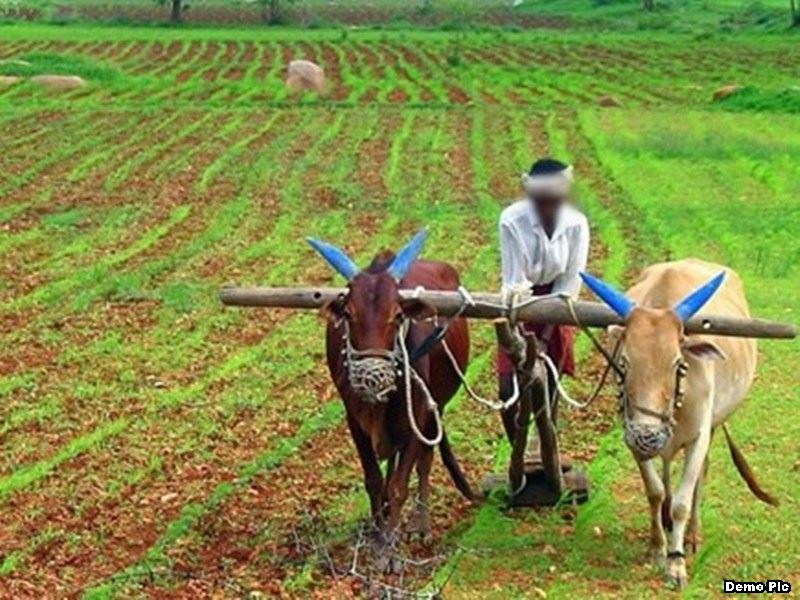 Kisan Indore News: किसानों की उपज खाने वाले व्यापारियों की संपत्ति कुर्की के बाद होगी नीलाम