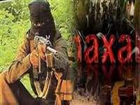 Naxali Killed During Encounter News: छत्तीसगढ़ की सीमा से सटे तेलंगाना के जंगल में मुठभेड़, एक नक्सली ढेर