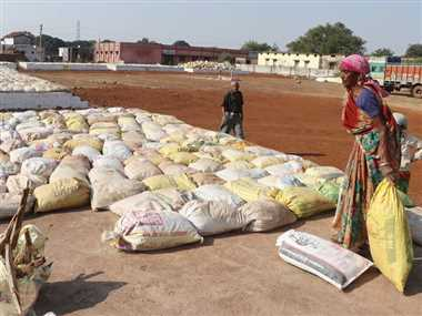 दुर्ग जिले में आज से धान खरीदी शुरू, अंतिम समय तक चलती रही तैयारी