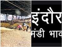 Indore Market : इंदौर में खोपरा गोला के भाव घटे, बूरा में तेजी