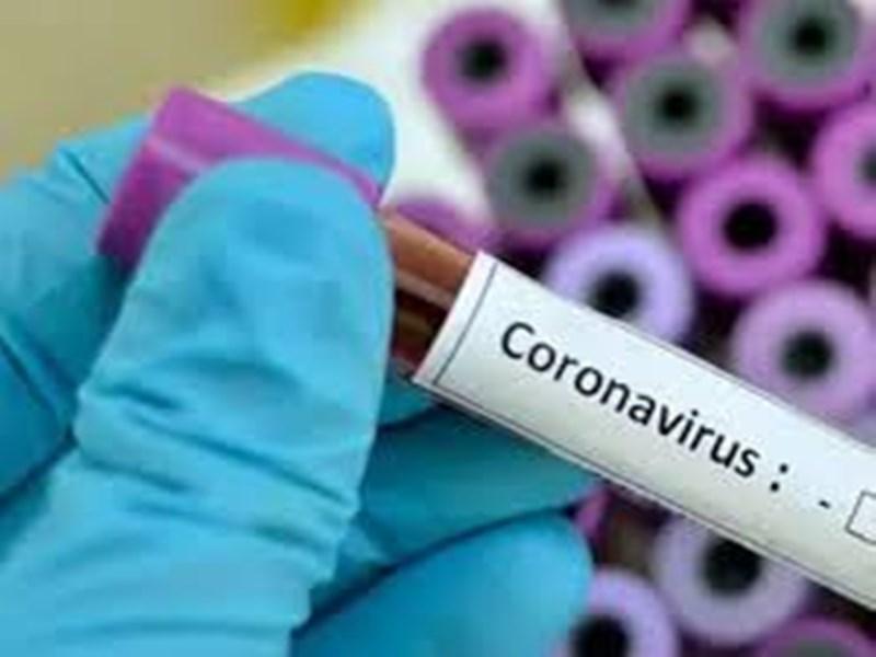 Coronavirus in Morena : मुरैना में एक दिन में सबसे ज्यादा 37 कोरोना पॉजिटिव मरीज मिले