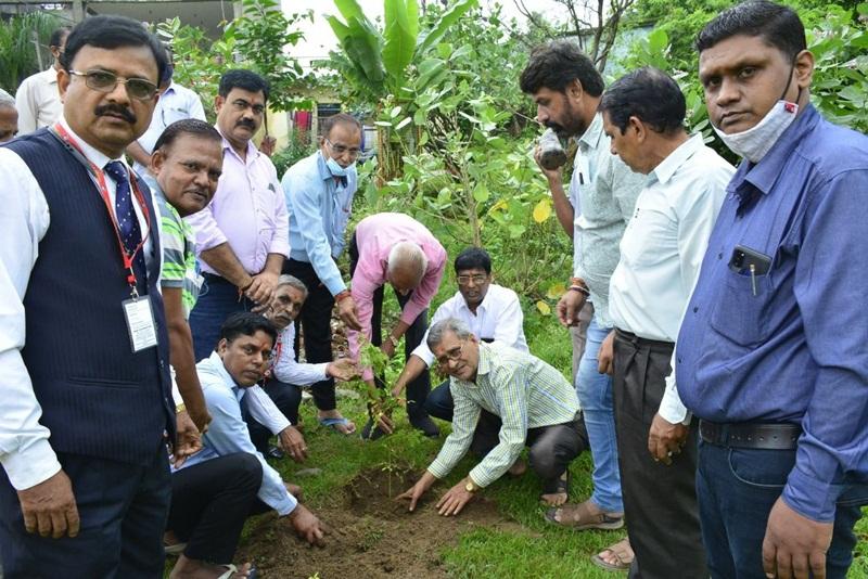 Jabalpur News : 552 पौधे लगाकर मनाया पौधारोपण पखवाड़ा