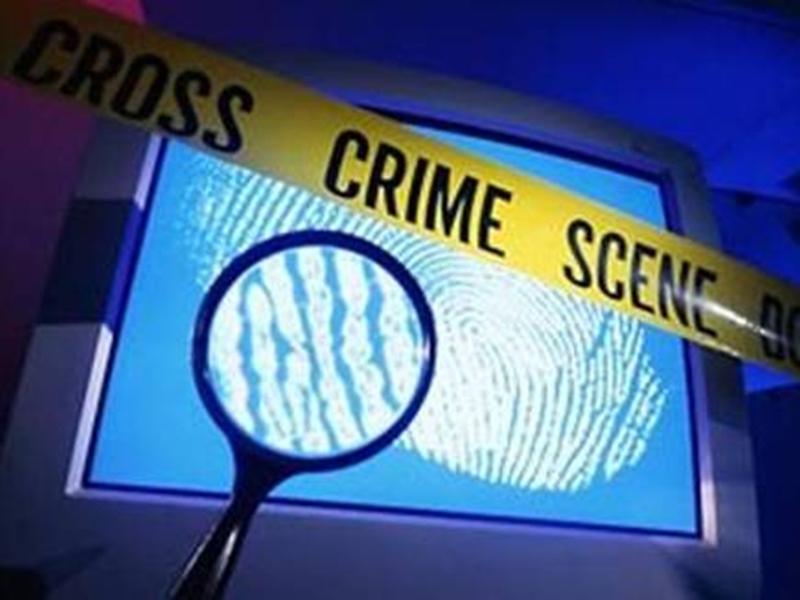 Bilaspur Crime News: नौकरी दिलाने का झांसा देकर 32 हजार की आनलाइन ठगी