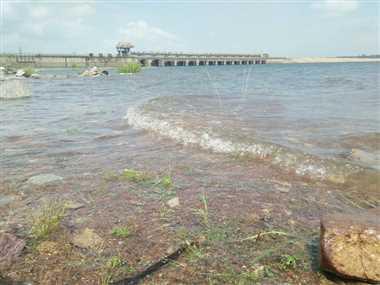 Gangrel Dam In Dhamtari: 27 टीएमसी भरा गंगरेल बांध, सिंचाई और रायपुर शहर के लिए पर्याप्त पानी