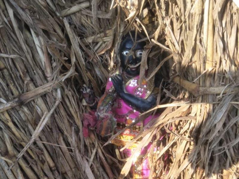 जब गाय ने ढूंढ निकाली मंदिर से चोरी हुई भगवान कृष्ण की मूर्ति