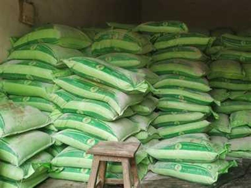 Agriculture News Bilaspur: खाद का भरपूर भंडार,अन्न्दाता के खेतों में लहलहाने लगी फसल
