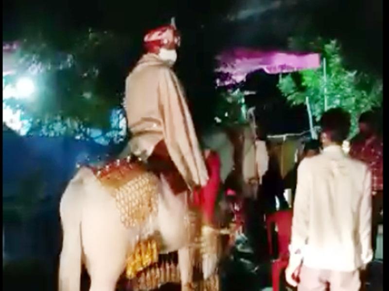 Janata curfew Indore: बैंडबाजा, बारात और डीजे, तीनों पर कर्फ्यू उल्लंघन का केस, पुलिस ले गई थाने