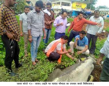 इंदौर-भोपाल मार्ग पर बेसहारा मवेशियों से हो रही दुर्घटनाएं