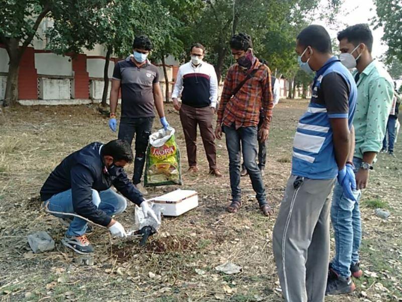 Bird Flu Alert in Ujjain: उज्जैन में तीन दिन में मृत कौओं के सात सैंपल जांच के लिए भेजे
