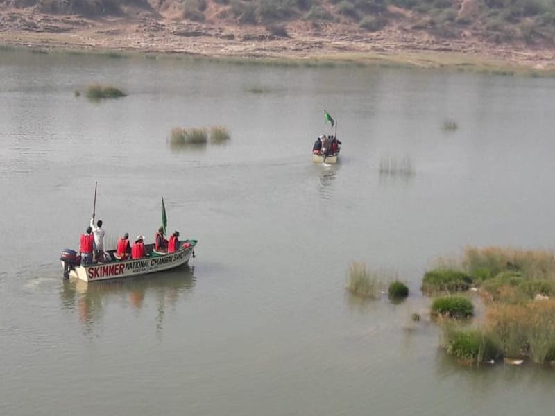 Morena News:  जलीय जीवों की गणना के लिए चंबल नदी में उतरीं सर्वे टीमें