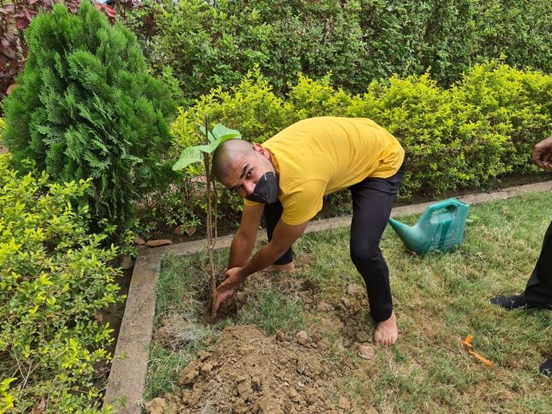 Bilaspur News:  ये है सच्ची श्रद्धांजलि, बच्चों ने रोपे 13 फलदार पौधे