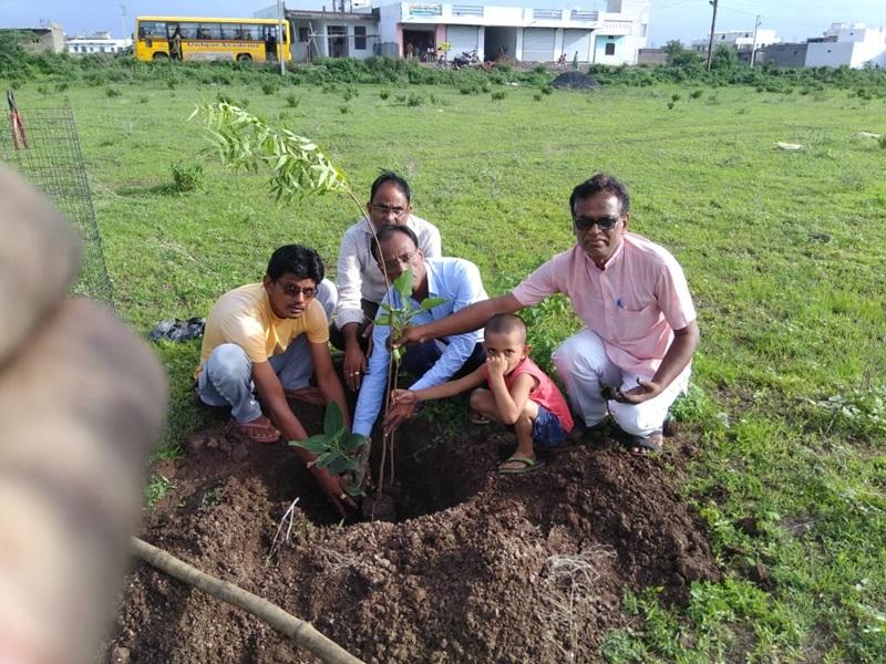 Madhya Pradesh News: 500 पौधों में से 200 बने पेड़, हर साल 60 करोड़ की आक्सीजन