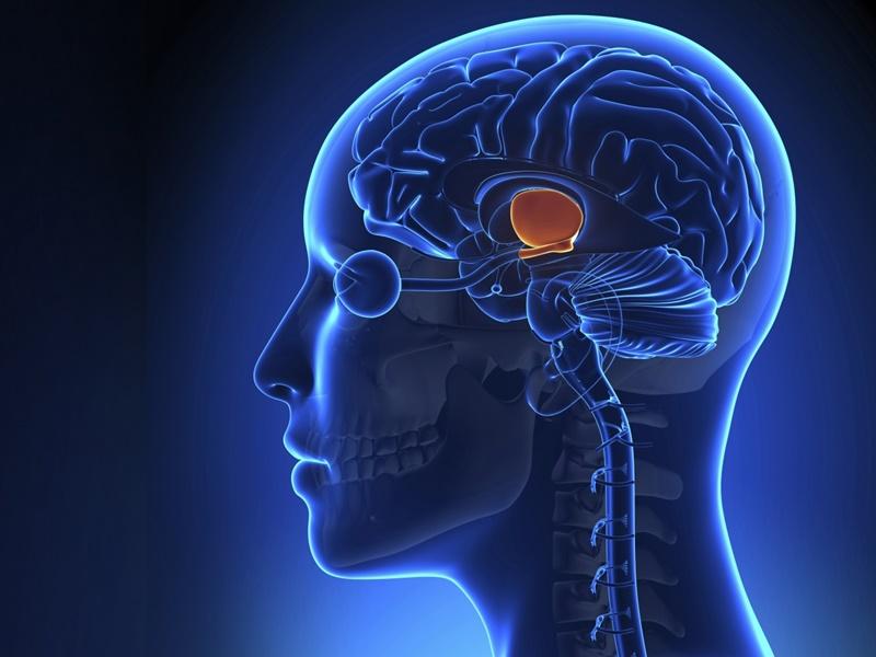 Brain Stroke : बड़ा फर्क है स्ट्रोक और ब्रेन अटैक में, इन शुरुआती लक्षणों से पहचानिये