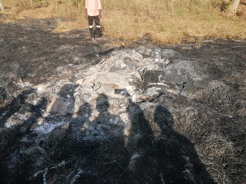 Crime News: पाटन में फंदे पर लटकी मिली पिता-पुत्र की लाश, तीन जले शवों के मिले अवशेष