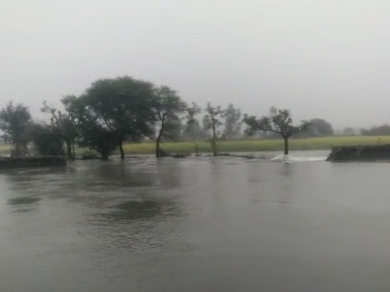Madhya Pradesh News:  Video मुरैना जिले में चंबल नहर फूटी, सैकड़ों बीघा फसलें जलमग्न