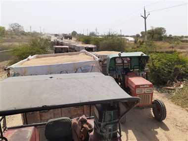 श्योपुरः साइलो केंद्रों पर धीमी गति से चल रही खरीदी की रफ्तार, 350 की जगह तुल पा रहा 200-250 ट्रॉली गेहूं