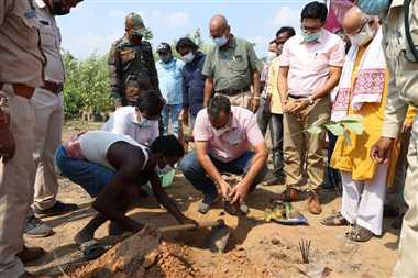 भिखारीमाल में हर्रा, आंवला, बेहड़ा के 500 पौधे लगाए गए