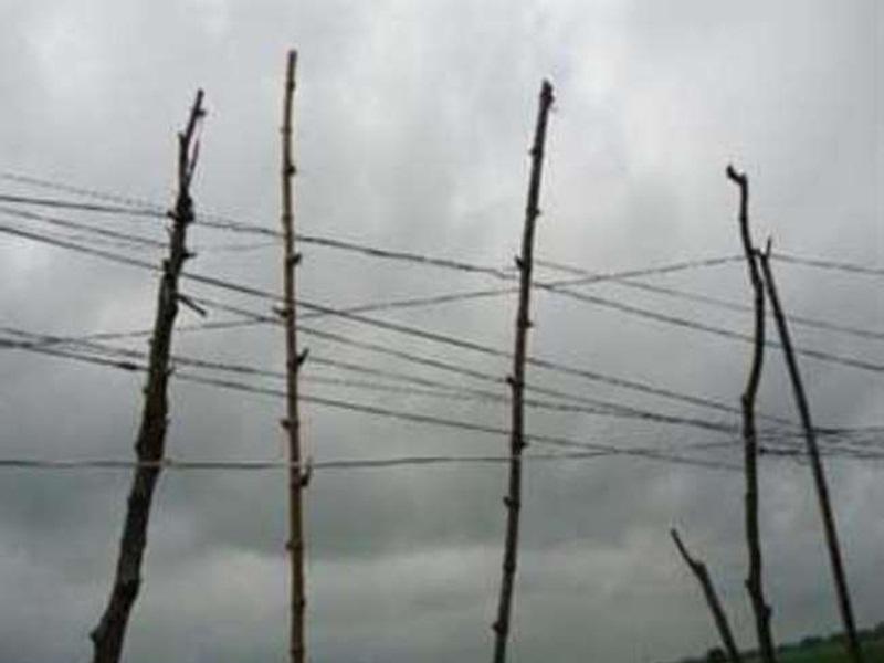 Jabalpur Weather News: बारिश के बाद बढ़ी ठंडक, तीन दिन तक हवा-पानी की संभावना