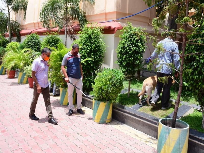Vikas Dubey Arrested : विकास दुबे की गिरफ्तारी के बाद बम स्क्वॉड ने खंगाला महाकाल मंदिर का कोना