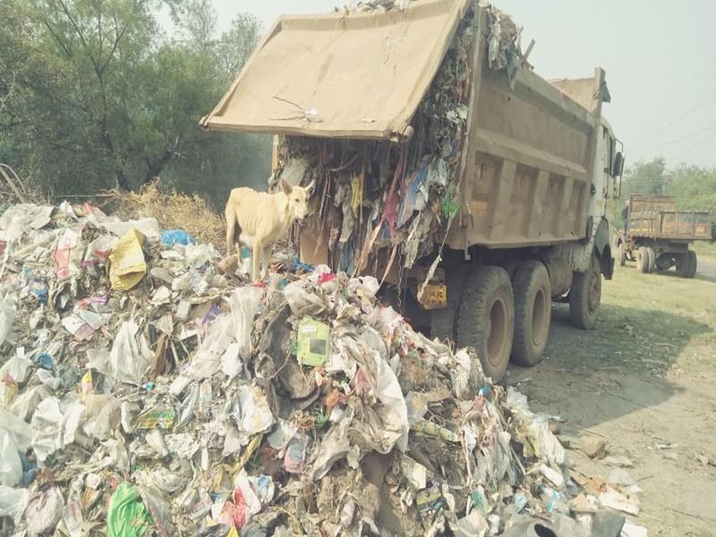Bhilai News: टाउनशिप में निगम क्षेत्र का कचरा डंप, अब बीएसपी प्रबंधन करेगा ऐसी कार्रवाई