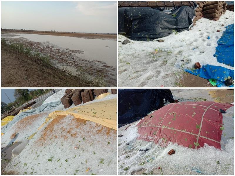 Rain in Madhya Pradesh: विदिशा में गिरे बड़े आकार के ओले, रायसेन व छिंदवाड़ा में भी हुई बारिश