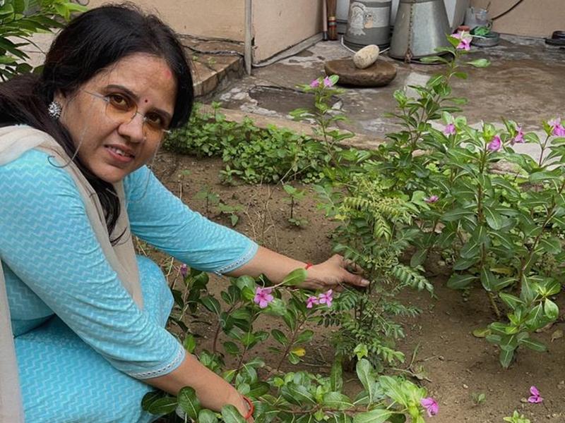 Naidunia Special Story: पौधारोपण से हुई भोर, पौधों से बंधी सांसों की डोर