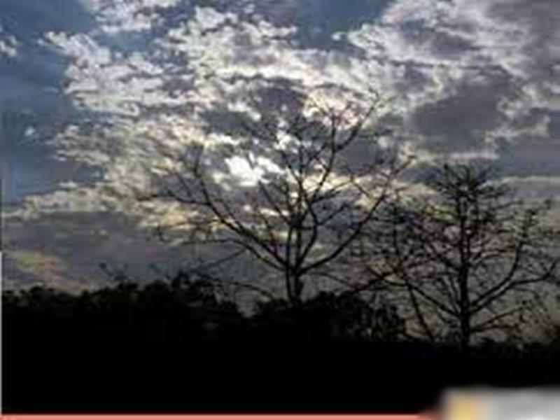 Monsoon in Indore: जानिये इंदौर में कब होगा मानसून का आगमन, कब होगी भारी बारिश