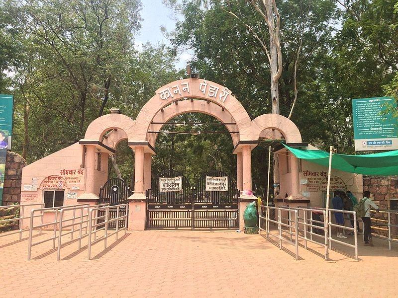 Covid Alart Kanan Pendari Zoo: कोरोना संक्रमण का खतरा, कानन पेंडारी जू में केवल आधे कर्मचारियों की ड्यूटी