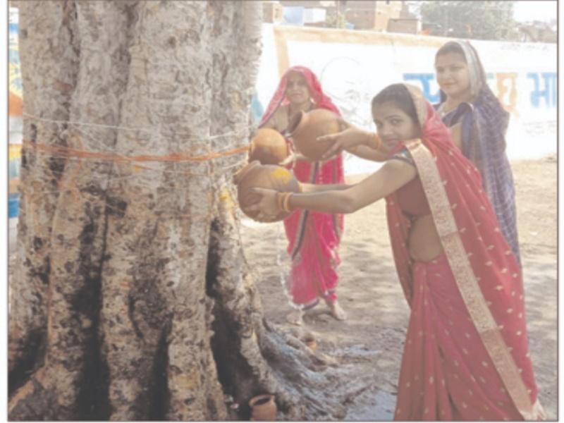 Gwalior Dharma Samaj News: पीपल की पूजा कर महिलाओं ने मांगी बच्चों की लंबी उम्र