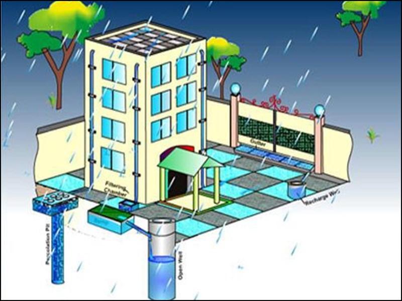 Rain Water Harvesting: निगम की अनूठी पहल, बारिश में छत का पानी अब सीधे जाएगा तालाब में