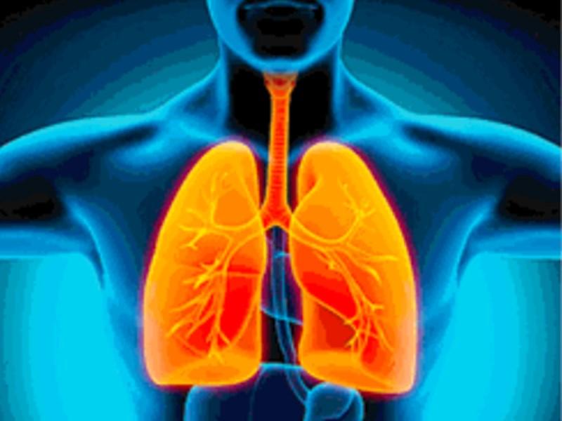 Coronavirus Infection : सांस की बीमारी से रहें सावधान, इलाज और जांच से न करें परहेज