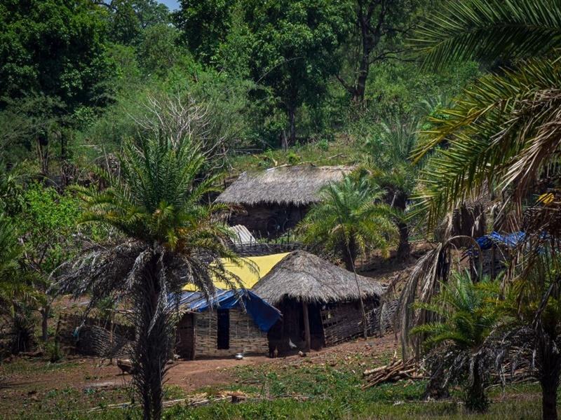 Chhattisgarh News: नक्सलियों के इस फरमान के बाद दो परिवारों को छोड़ना पड़ा अपना गांव