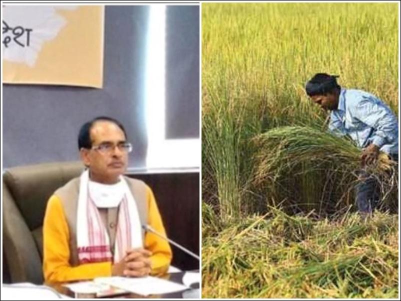 मध्यप्रदेश सरकार का बड़ा फैसला, लघु-सीमांत किसानों का भी कर्ज होगा माफ, रुकेगी वसूली