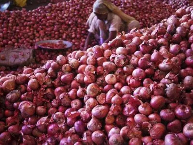 गुजरात में प्याज का बंपर उत्पादन, 20 रुपए में भी नहीं खरीद रहा कोई, किसान परेशान
