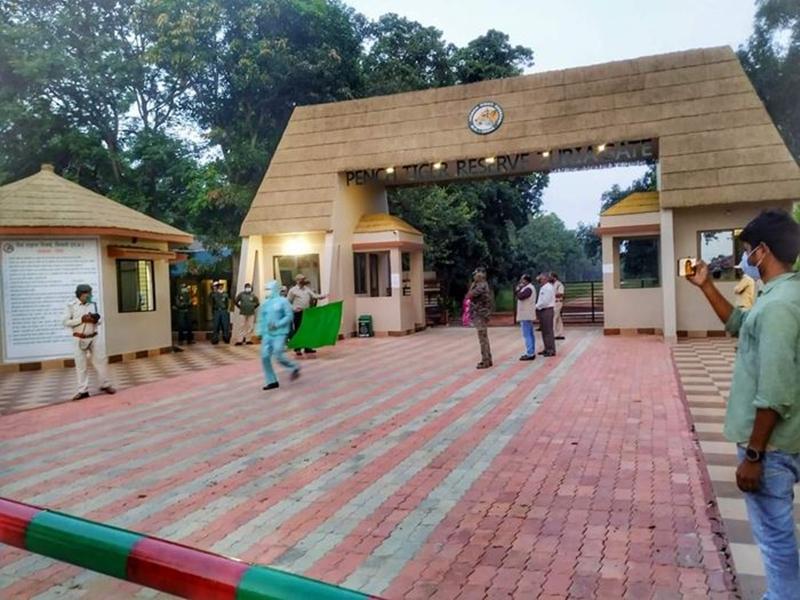 Jabalpur News: अवैध रूप से निर्मित पेंच टाइगर रिजर्व के रिसॉर्ट राडार पर, पर्यटन गतिविधि बढ़ाने की कवायद