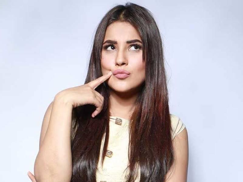 Shehnaaz Gill सोशल मीडिया पर कमाती हैं टीवी और बॉलीवुड सेलेब्स से कई गुना ज्यादा रकम लेती हैं