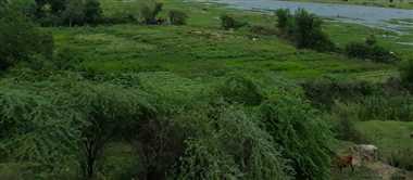 दूरस्थ गांव में स्थापित होगी बैंक, ग्रामीणों को मिलेगी सुविधा