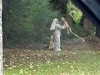 श्मशान में कंकालों के साथ डांस करती दिखी नन, यहां 50 साल से नहीं दफन हुआ कोई शव