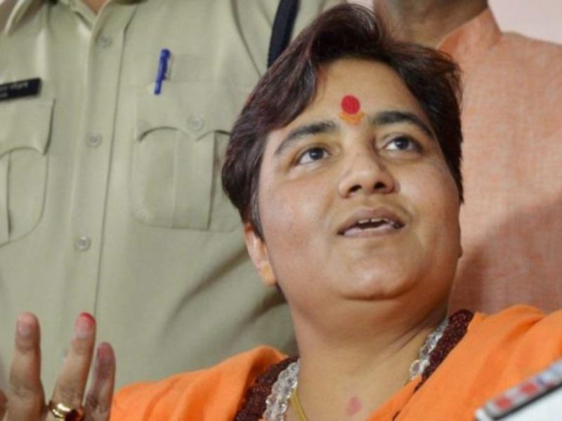 Madhya Pradesh News:  भाजपा संसद सदस्य  प्रज्ञा सिंह ठाकुर की आपत्ति के बाद सांडों के बधियाकरण का अभियान स्थगित
