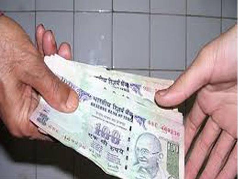 Madhya Pradesh News : दमोह में सात हजार रुपये की रिश्वत लेते डिप्टी रेंजर गिरफ्तार
