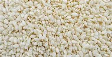 राजगिर और सफेद तिली में दो रुपये की मंदी
