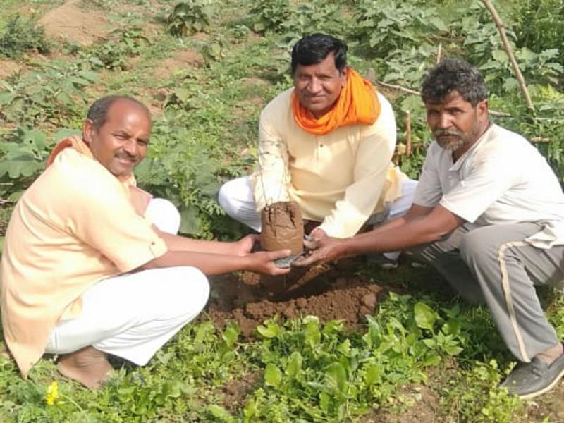 Narsinghpur News: गांवों में जाकर पौधों का कर रहे रोपण, डेढ़ साल से लगा रहे हर दिन एक पौधा