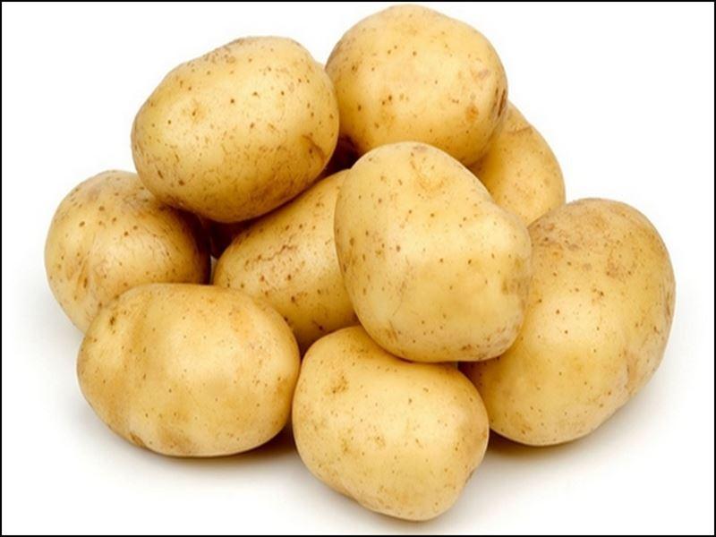 Seoni News: चिप्स कंपनी किसानों से 11.40 रुपये प्रति किलो के दाम से खरीदेगी आलू