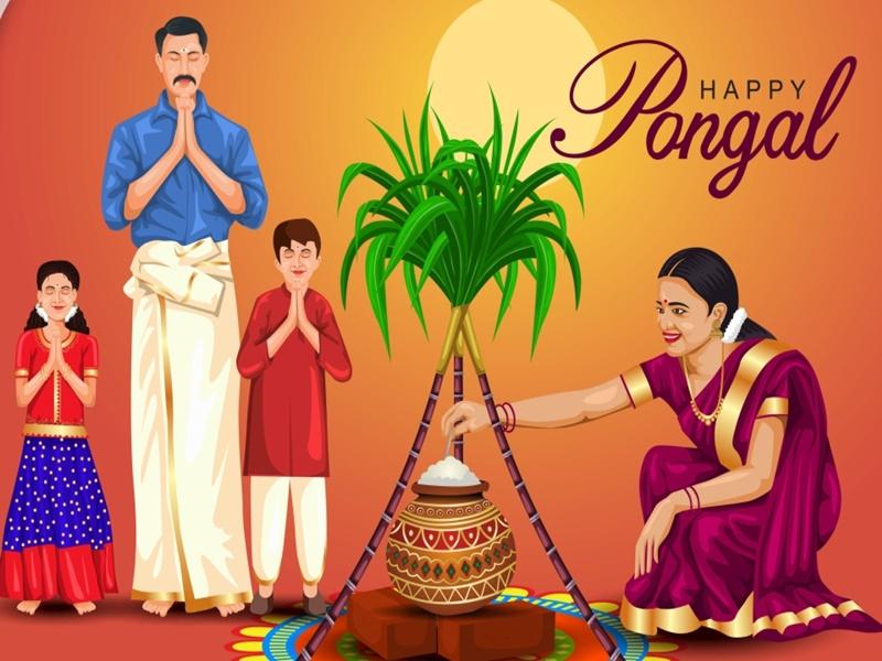 Pongal 2021: तीन दिन तक मनाया जाता है पोंगल पर्व, ऐसा है इतिहास व धार्मिक महत्व